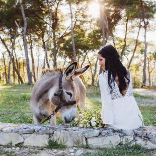 Afterwedding_Griechenland_liethisorganicfarm0015